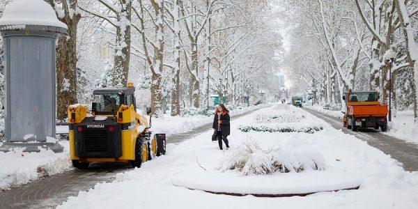 Первышов поручил вывезти снег пока он не растаял