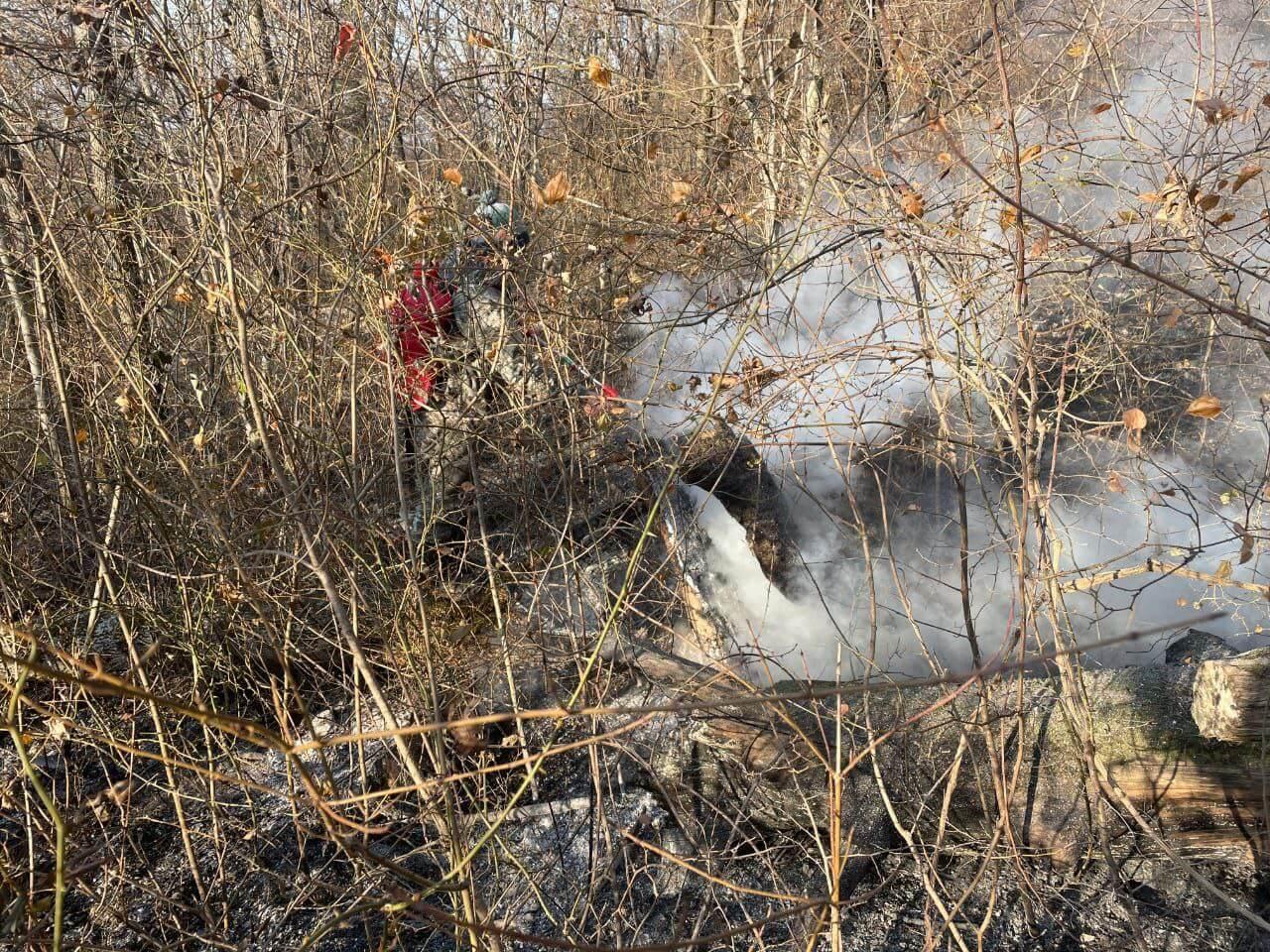 В Сочи спасатели локализовали все лесные пожары