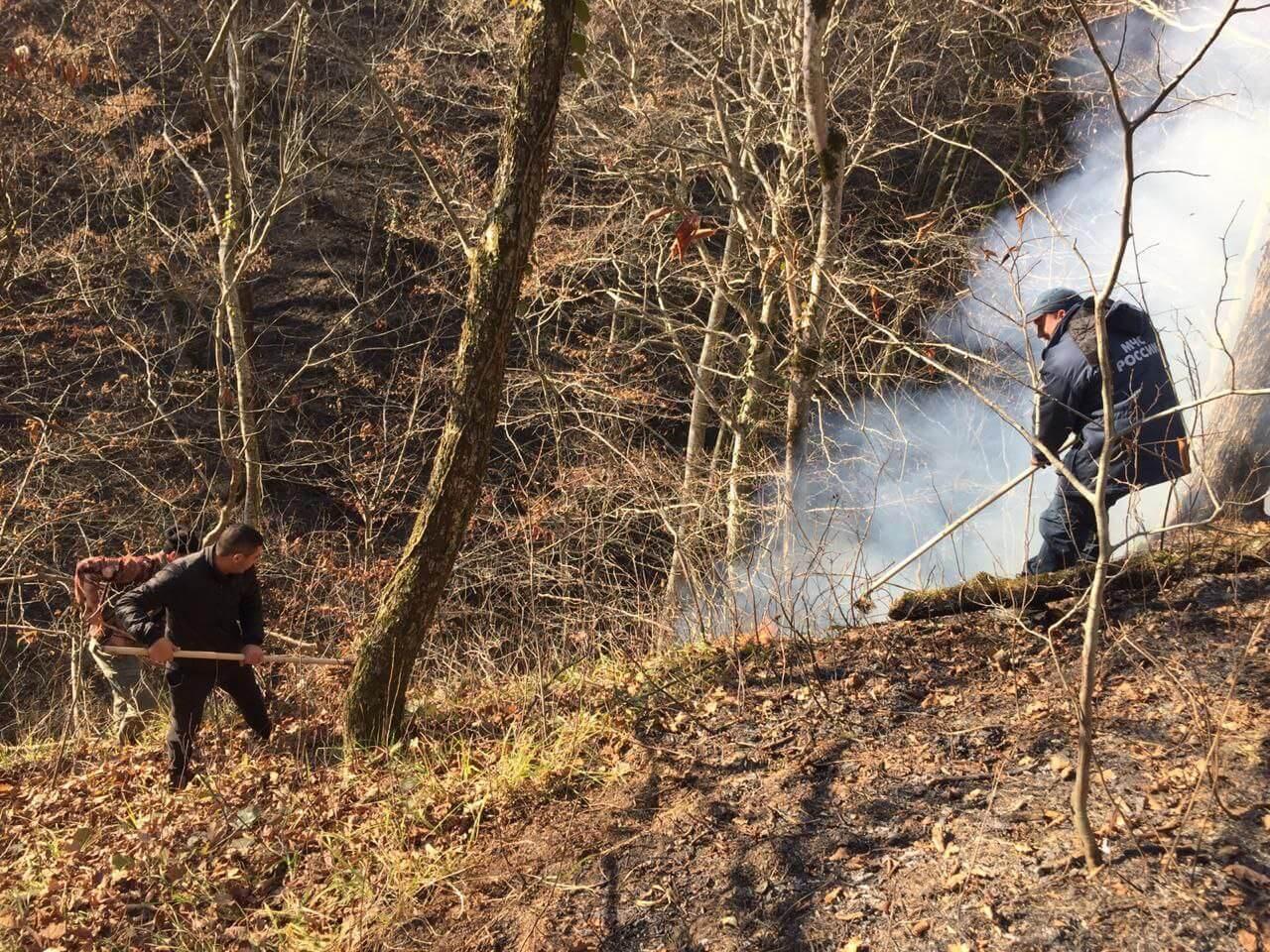 В горах Сочи спасатели полностью потушили два лесных пожара