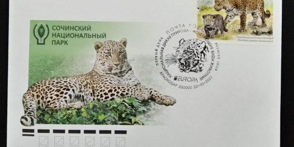 В России выпустили почтовую марку с краснокнижным кавказским леопардом