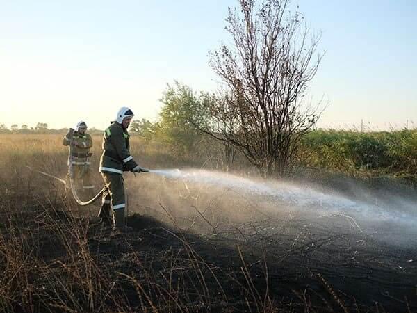 В Сочи ночью загорелась сухая трава на площади 250 кв. метров