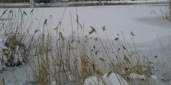 В Горячем Ключе мужчина утонул в озере, спасая девушку