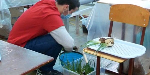 В Армавире на региональном этапе WorldSkills представили новую компетенцию