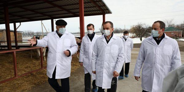 Вениамин Кондратьев: нужно создать условия для развития животноводства