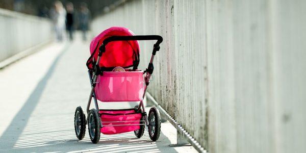 В Сочи 11-месячный младенец выпал из коляски и чуть не утонул в водоеме