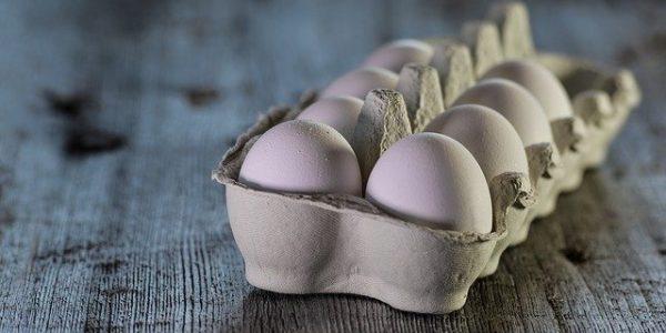 В России могут подорожать яйца и мясо птицы