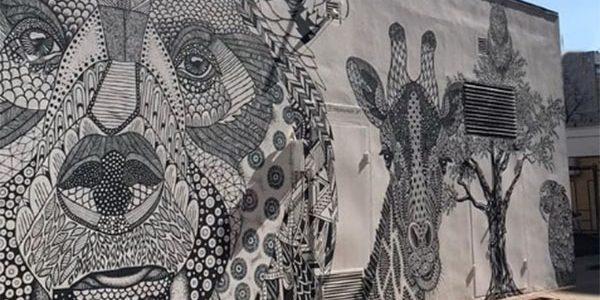В Краснодаре уличный художник нарисовал мини-зоопарк на электроподстанции