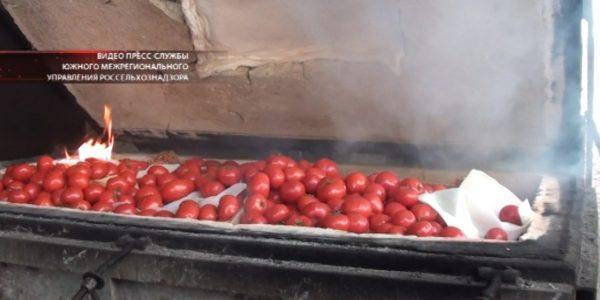 В Краснодаре сожгли 710 кг санкционных овощей