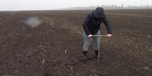 В Белоглинском районе уровень влажности на полях достиг благоприятных значений
