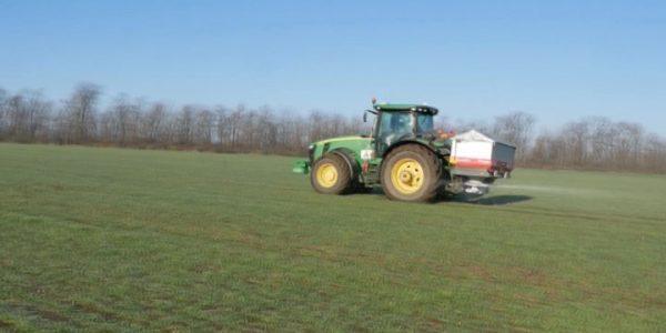 В Кореновском районе приступили к подкормке озимых пшеницы и ячменя