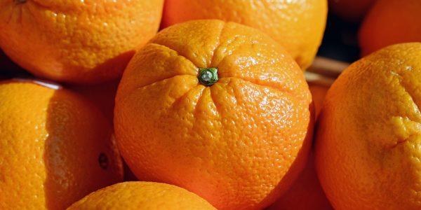 В порту Новороссийска задержали 117 тонн зараженных апельсинов