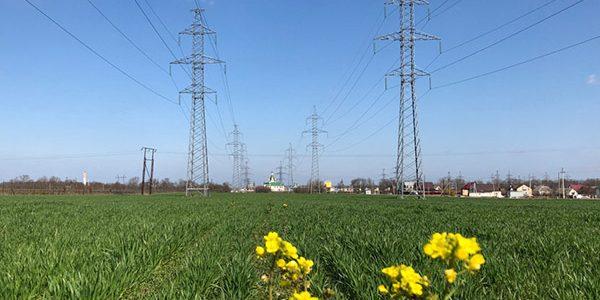 «Россети Кубань» подключила к электросетям около 100 объектов АПК