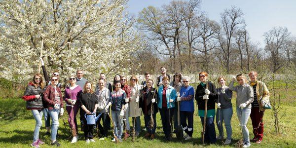Сотрудники телеканала «Кубань 24» посадили яблоневый сад. Фоторепортаж.