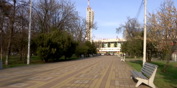 Идею поставить памятник Виктору Цою поддержала главный архитектор Краснодара