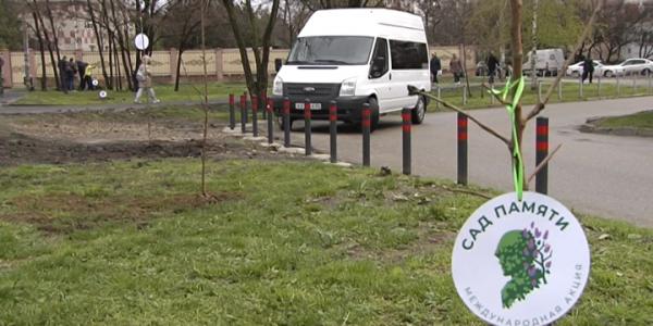 В Юбилейном микрорайоне в рамках акции «Сад памяти» высадили 26 яблонь