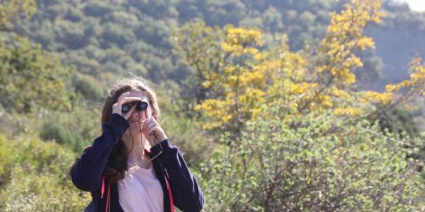 Кубанских школьников пригласили на международный экологический конкурс