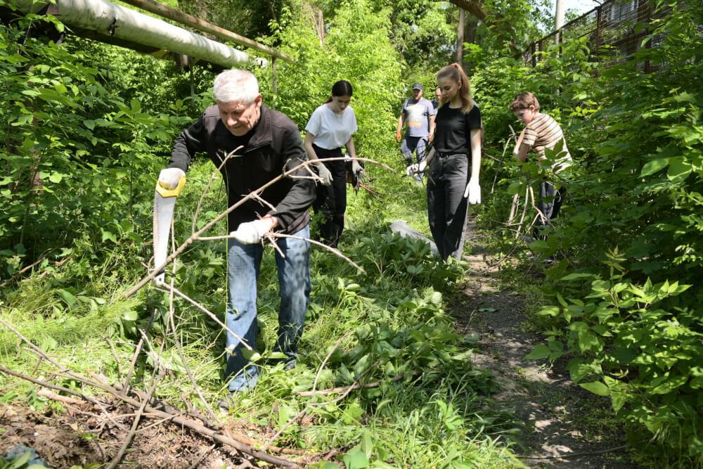 В Краснодаре местные жители навели порядок на пустыре около Чистяковской рощи