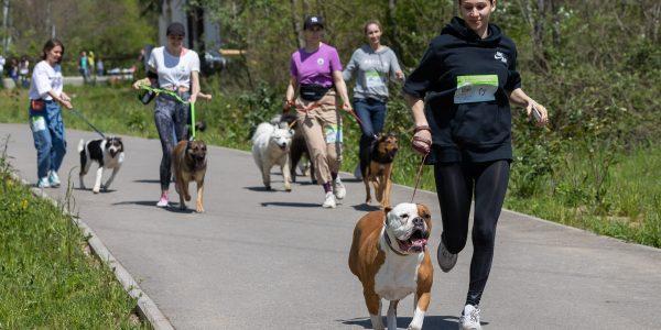 В Сочи 1 мая прошел совместный забег хозяев с собаками