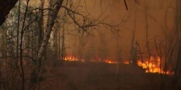 В Краснодарском крае началась подготовка к пожароопасному летнему сезону