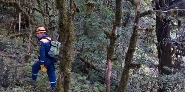 В Сочи спасатели вывели из леса заблудившуюся из-за плохого самочувствия женщину