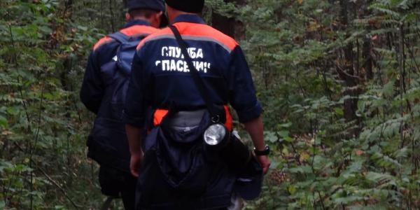 В Горячем Ключе нашли тело пропавшего пожилого мужчины