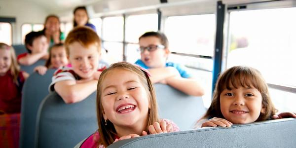 Кондратьев поручил усилить безопасность детских экскурсий в курортный сезон