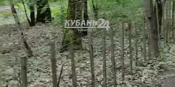 В Абинском районе неизвестные ограничили бесплатный проход к дольмену. Видео