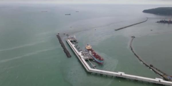 Эксперты: разлив нефти в море под Туапсе опасен для рыбы и дельфинов
