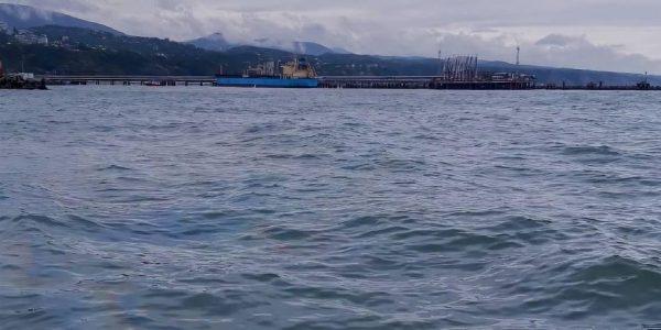 Росприроднадзор завел административное дело из-за разлива нефти в районе Туапсе