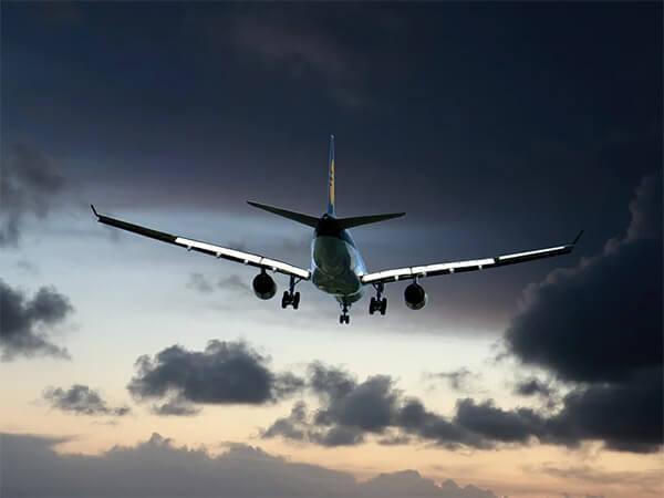 Вылетевший в Геленджик самолет столкнулся с птицами