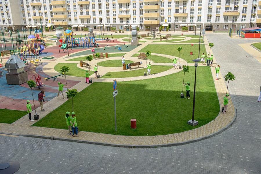В Краснодаре в рамках акции «Зеленый двор» высадили 10 деревьев
