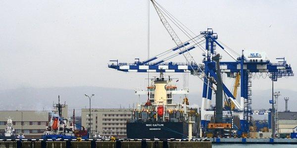 Порт Новороссийска стал единственным на юге, где разрешен ввоз пестицидов