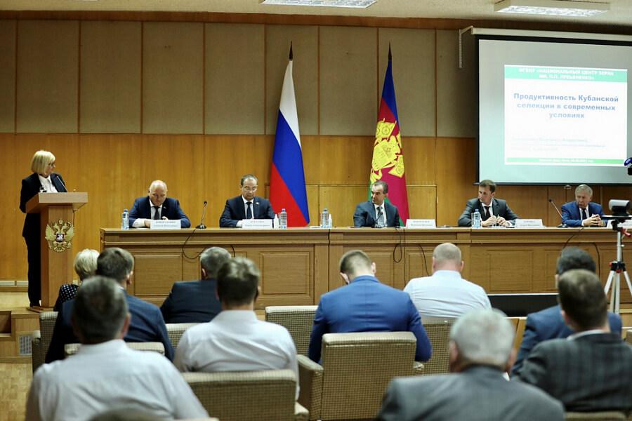На Кубани в 2021 году планируют собрать не менее 11 млн тонн зерна