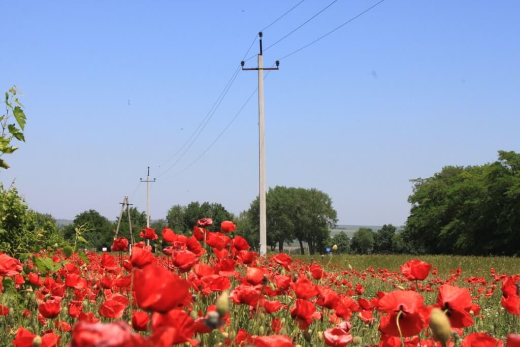 Юго-Западный филиал «Россети Кубань» обеспечил энергией 1800 новых потребителей