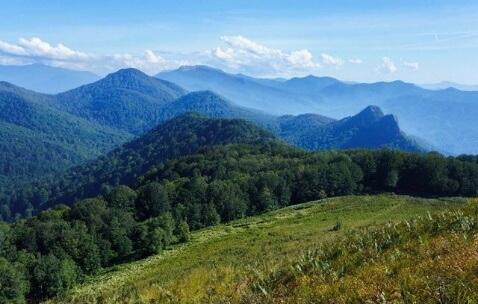 В горах Туапсинского района нашли грибника, которого искали почти неделю