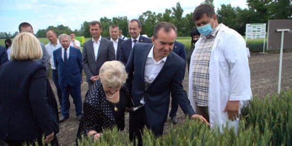 Кондратьев: научный подход позволяет развиваться аграрной сфере Кубани