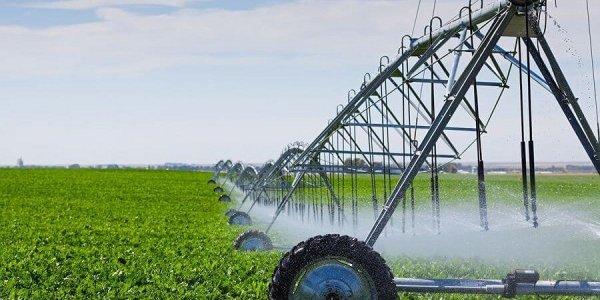На Кубани к 2024 году площадь мелиорируемых земель увеличат до 400 тыс. га