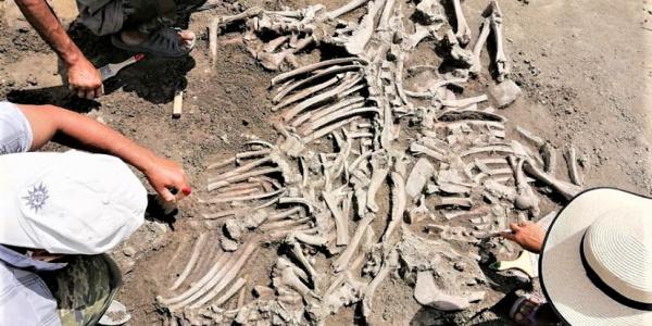 На Кубани на стройке нашли предметы эпохи Великого переселения народов