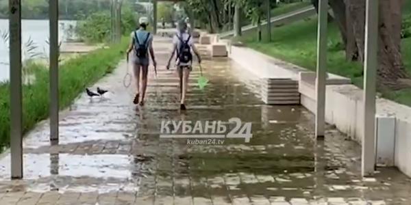 В Дмитриевском сквере Краснодара тротуар покрылся водорослями