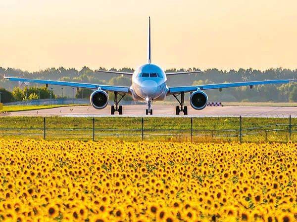 В аэропорту Краснодара уточнили порядок прилета туристов на Кубань с 1 июля