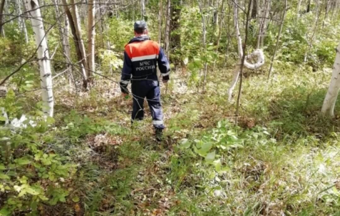 В Туапсинском районе для поисков пропавшего грибника подключили квадрокоптеры