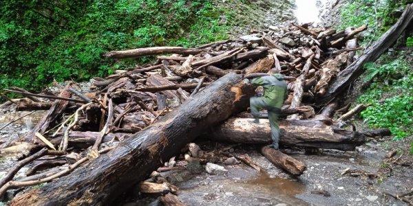 В Сочи размыло дорогу, соединяющую село Аибга с цивилизацией