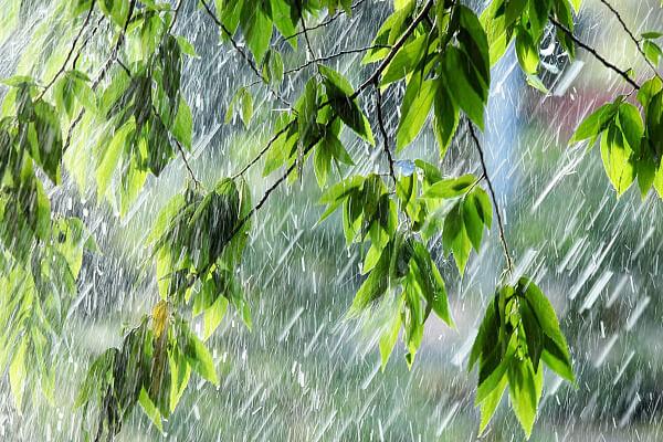 В Сочи в ближайшее время ожидают грозу и сильный дождь