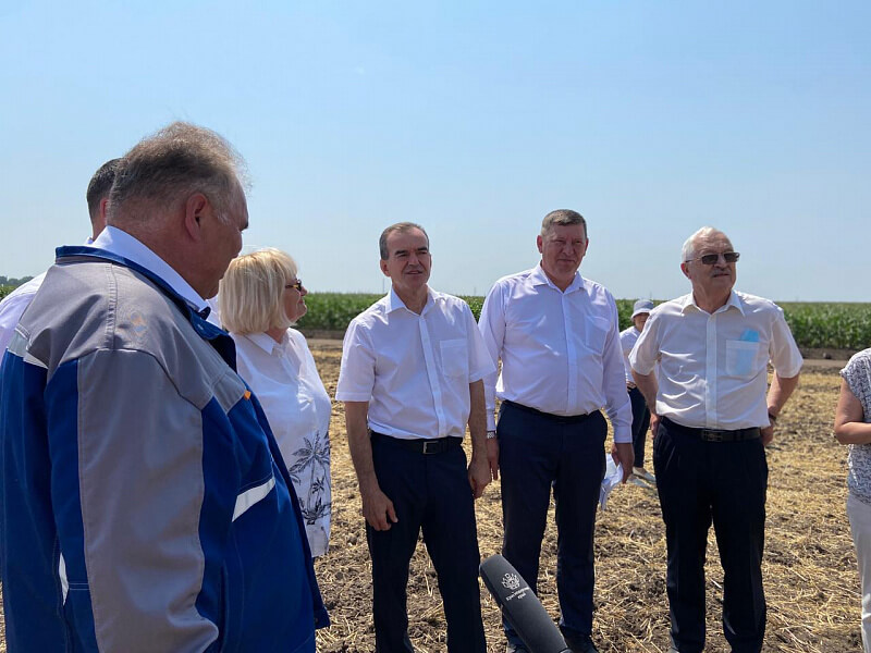 В Усть-Лабинском районе аграрии убрали более 40% посевов озимой пшеницы