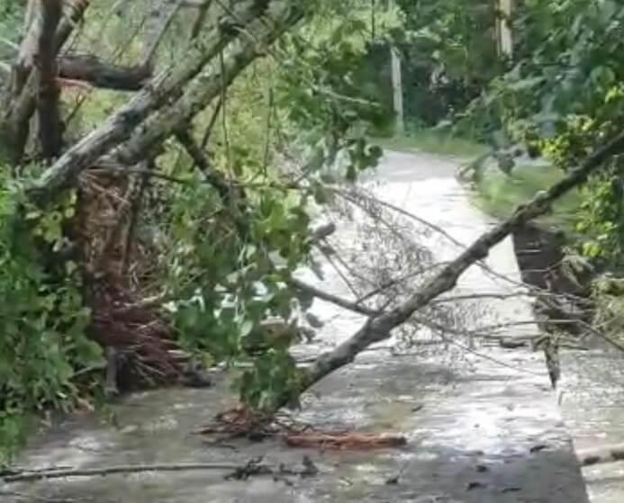 В Сочи нашли тела пассажиров из унесенной рекой машины