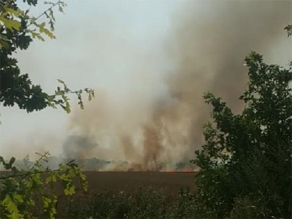 Под Краснодаром загорелось пшеничное поле на площади около 1 гектара