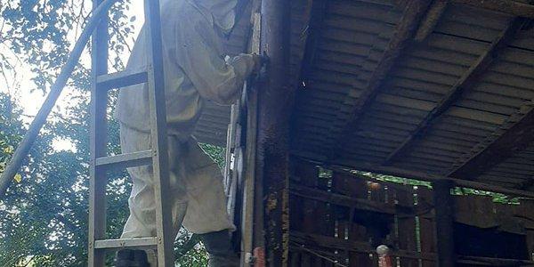 В Новороссийске спасатели достали из трубы улей с 10 кг меда