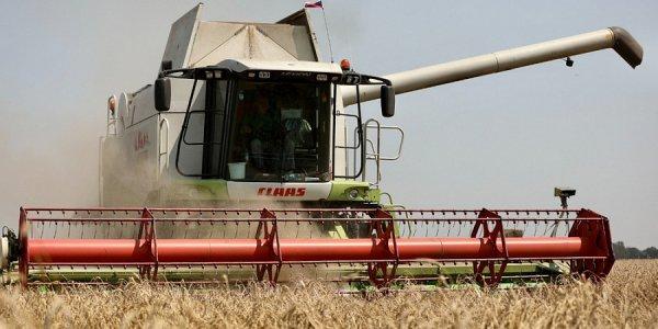 Кубанские аграрии обновили исторический рекорд по сбору зерновых культур