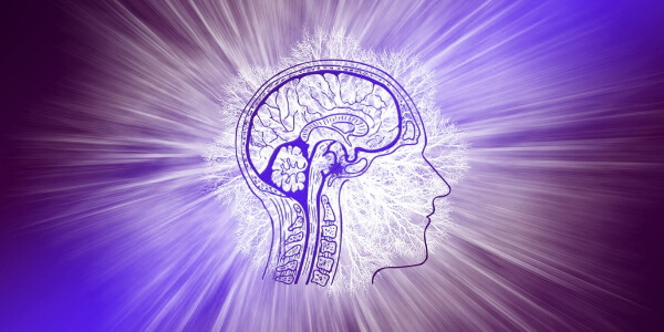Как поддержать свой мозг? Полезные привычки и рацион