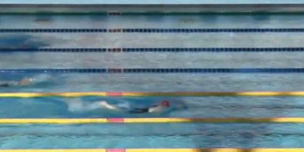 Кубанские пловцы завоевали четыре медали первенства Европы